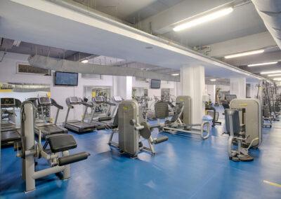 Start Gym